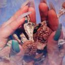 Terence McKenna: pionero de los psicodélicos y la contracultura