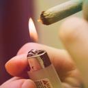 ¿Qué ocurre si fumas setas mágicas?