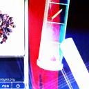 Microdosis de trufas mágicas