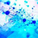 La psilocibina promueve el crecimiento de nuevas células cerebrales